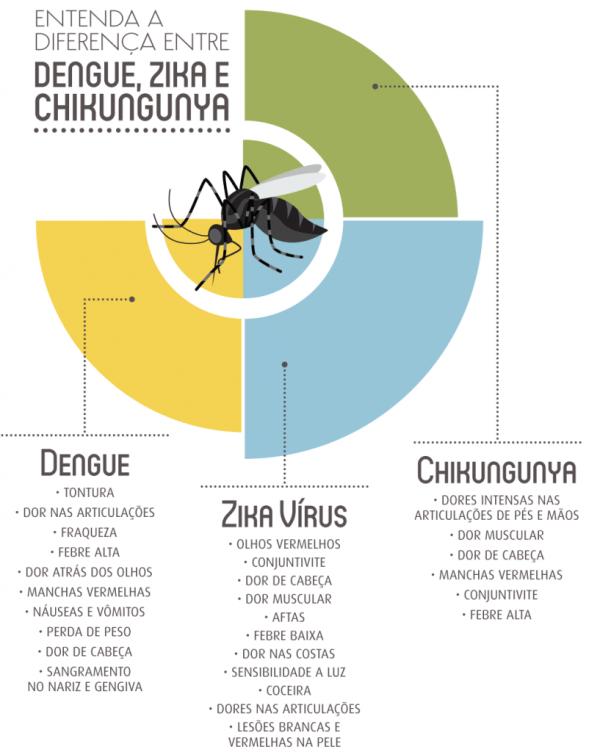 dengue, zika e chikungunya