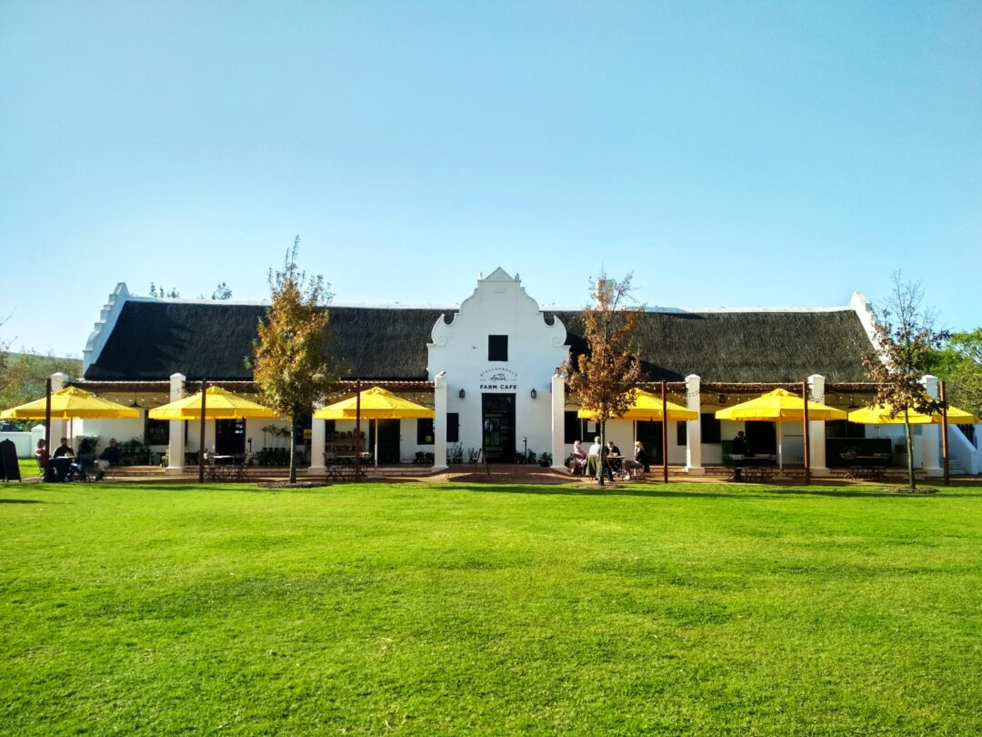 Spier Wine Farm in Stellenbosch (Copyright: Eugene Yiga)