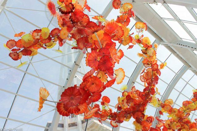 Chihuly Garden and Glass-20