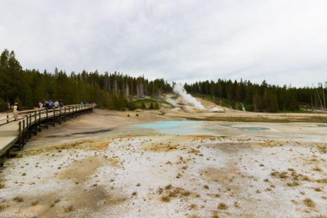 Parque Nacional Yellowstone-10