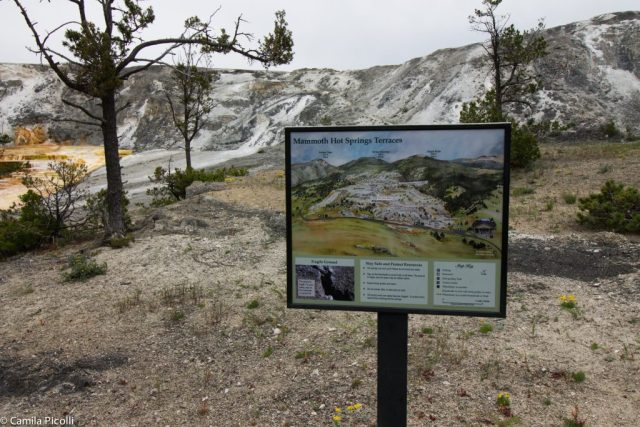 Parque Nacional Yellowstone-13