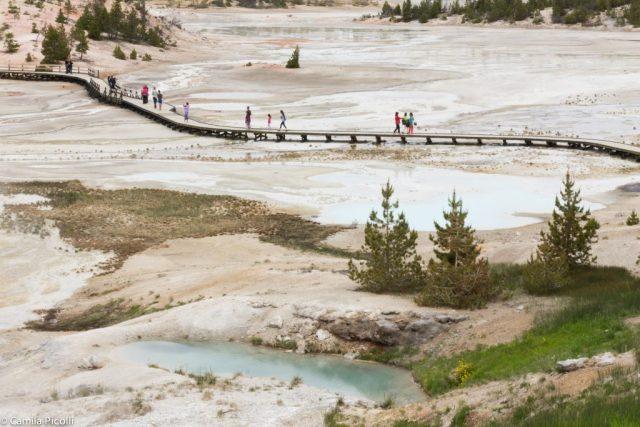 Roteiro de dois dias em Yellowstone - Norris Geyser Basin