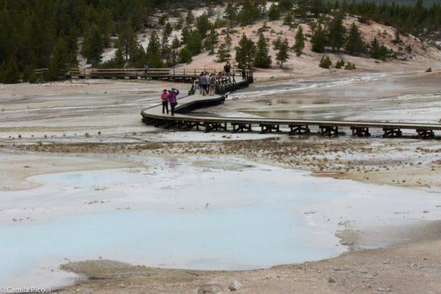 Parque Nacional Yellowstone-8
