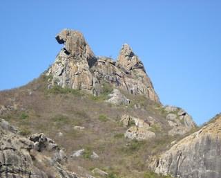 Galinha Choca em Quixadá - Fonte Wikipedia