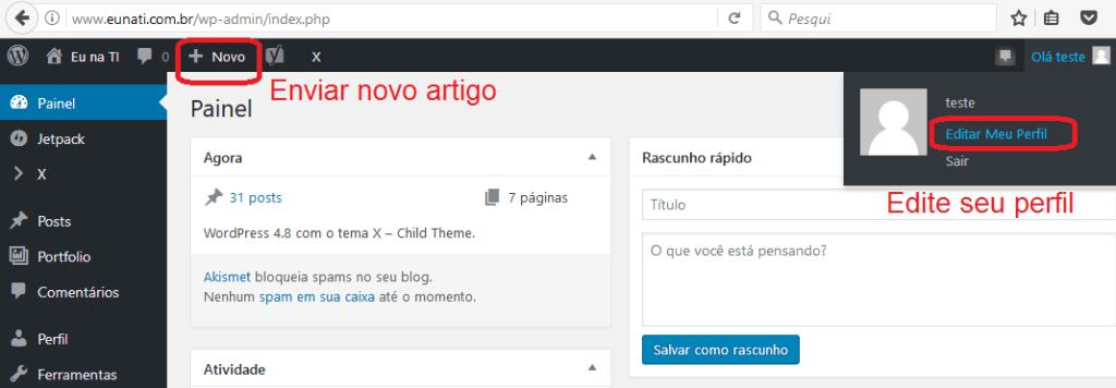 Enviar novo artigo e editar perfil