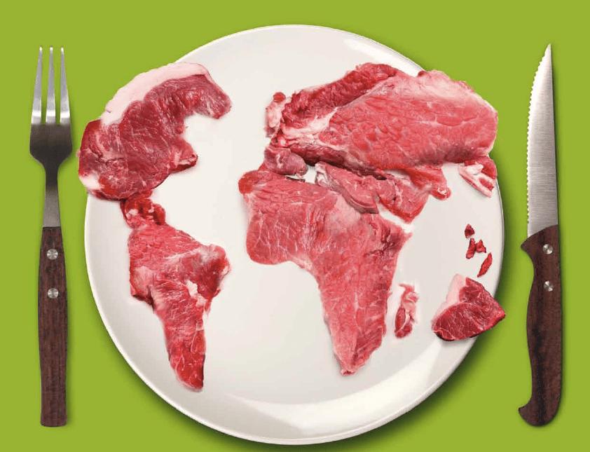 impatto-ambientale-carne
