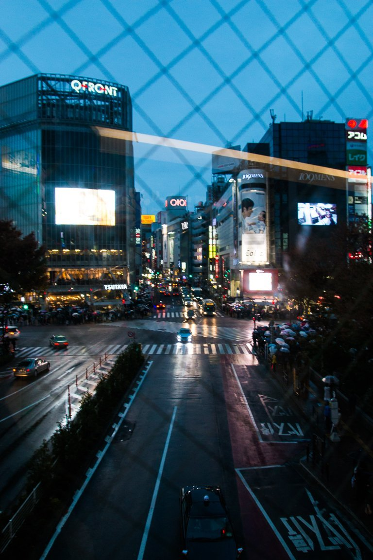 First trip to Japan: A 10-day itinerary