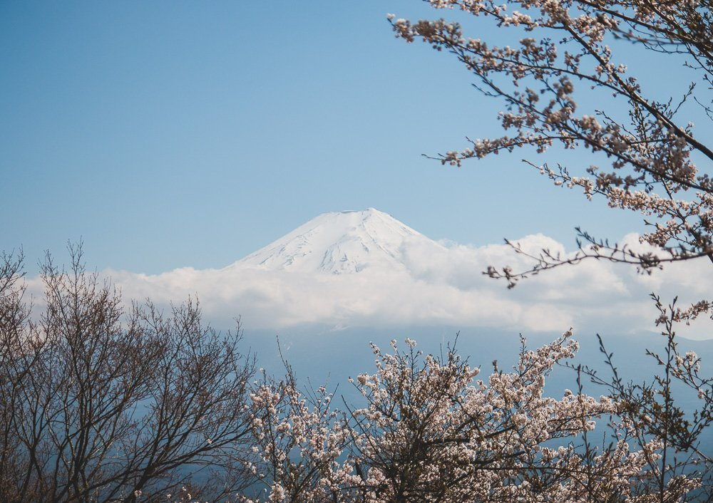 Lake Kawaguchiko: A day trip from Tokyo to view Mount Fuji and cherry blossoms