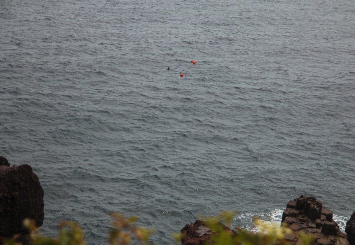 Jusangjeolli cliffs, 3 day Jeju itinerary