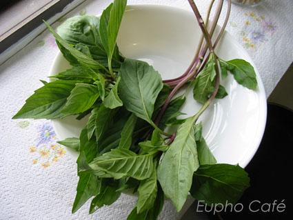 九層塔,羅勒 from Eupho Café - 愛在廚房