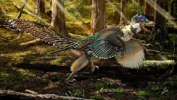 INCRIVEL Pesquisadores encontram o maior dinossauro com asas