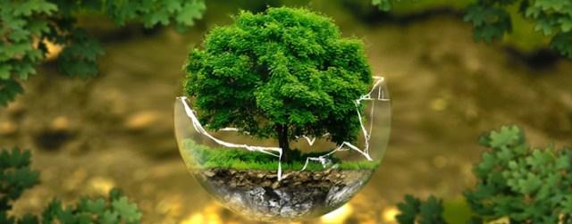 curso-profissionalizante-analista-ambiental1