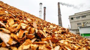 Η Σλοβακία και η Τσεχία καλούν την Επιτροπή να αναβάλει την πρόταση «ταξινομίας του κλίματος» – EURACTIV.com