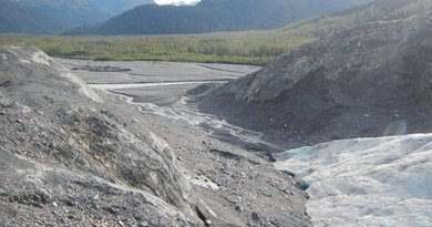 A melting tongue of Exit Glacier near Seward, Alaska, continues to dwindle and pour water into streams below, as it has been doing for decades. Photo Credit: OSU