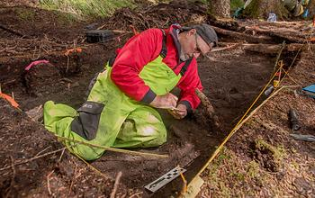 Dave McMahan, Neva Project principal investigator, takes notes in a completed excavation block. Credit  Gleb Mikhalev