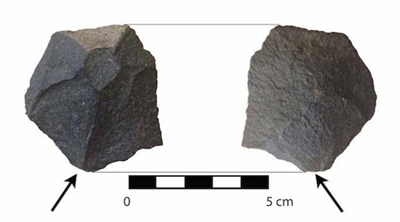 A very small faceted basalt wedge. Basalt is a local material. This tool, also found at MVI, was made 15,000-16,000 years ago. It would have been used for woodworking. Credit: Courtesy Tom Dillehay