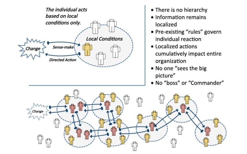 Figure 2: Swarm Intelligence and Decentralized Decision-Making
