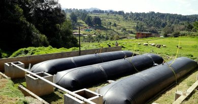The biodigester, commercially called Biobolsa (bio-bag), transform the waste in a container made of high density geomembrane where polyethylene components and bacteria generate gas.