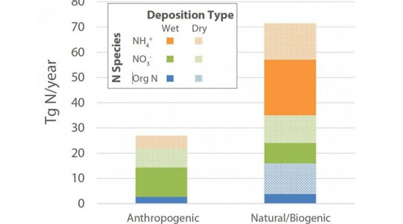 A new study suggests that most of the nitrogen deposited from the atmosphere into the open ocean comes from natural sources, not humans. The findings suggest humans aren't disrupting ocean biogeochemistry as much as some models might predict. Credit: Hastings lab / Brown University