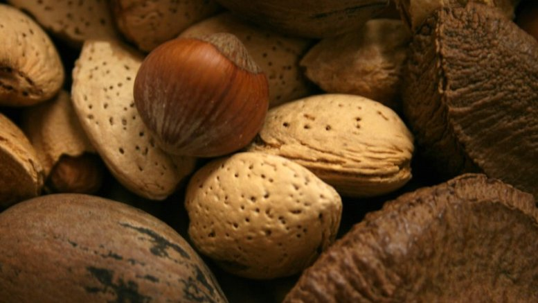 A variety of nuts, including almonds.