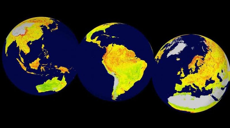 Global map of the Vegetation Sensitivity Index (VSI), a new indicator of vegetation sensitivity to climate variability using satellite data. Red colour shows higher ecosystem sensitivity, whereas green indicates lower ecosystem sensitivity. Grey areas are barren land or ice covered. Inland water bodies are mapped in blue. Photo: LEFT