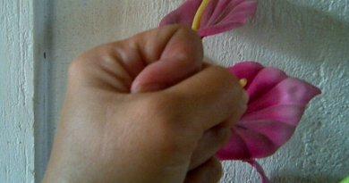 anger hate hand flower gender hate