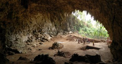 Cave where the remainings of Homo floresiensis were discovered in 2003, Liang Bua, Flores, Indonesia. Photo by Rosino, Wikipedia Commons.