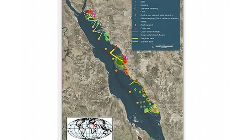 Data from research conducted close to KAUST is combined with data collected in more remote areas to build a comprehensive picture of the Red Sea.