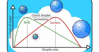 Cloud droplets form when the amount of water vapor reaches a threshold value. Larger cloud droplets form when organic molecules (in red) are present on the surface instead of dissolving in the interior, or bulk, of the droplet. Credit James Davies, Berkeley Lab