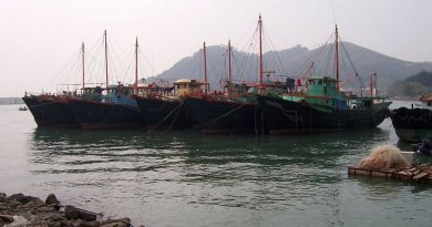 Chinese fishing boats. Photo by Enochlau, Wikipedia Commons.