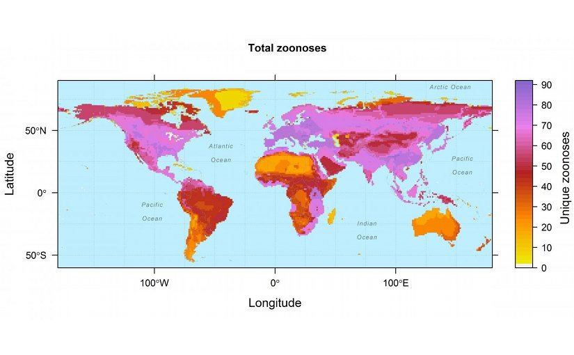 This figure shows overlapping geographic ranges of zoonotic diseases carried by wild terrestrial mammal host species from 27 orders. Credit Drew Kramer