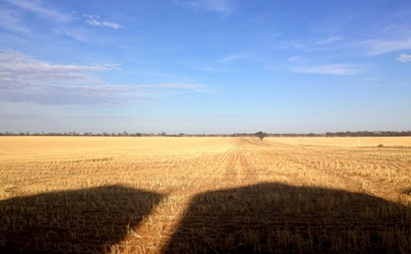 farm farming agriculture