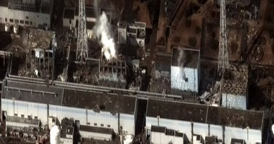 The Fukushima I Nuclear Power Plant after the 2011 Tōhoku, Japan earthquake. Photo by Digital Globe, Wikipedia Commons.