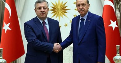 Georgia's PM Giorgi Kvirikashvili and Turkish President Recep Tayyip Erdoğan, Ankara, July 19, 2016. Photo: Turkish president's office