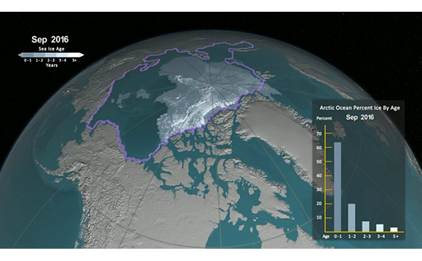 Arctic sea ice has not only been shrinking in surface area in recent years, it's becoming younger and thinner as well. Credit: Screenshot from NASA's Goddard Space flight Center/Jefferson Beck animation.