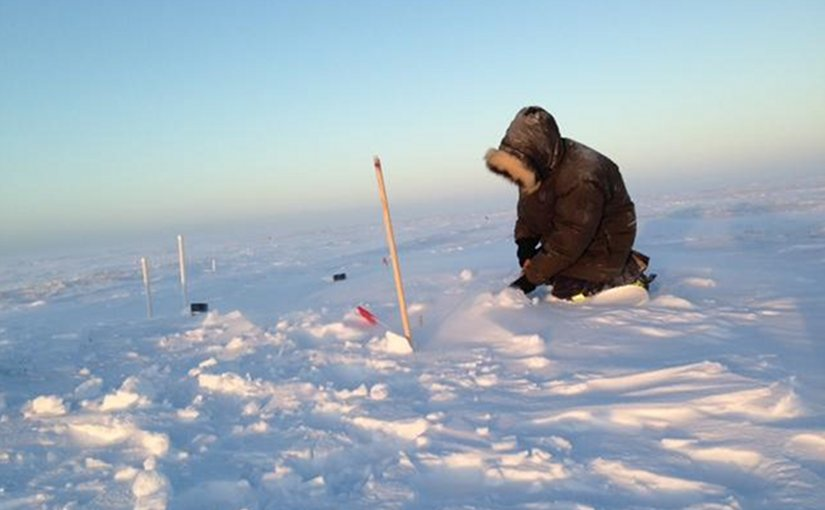 Berkeley Lab researcher Naama Raz-Yaseef in the field in Alaska. Credit Stan Wullschleger/Oak Ridge National Laboratory