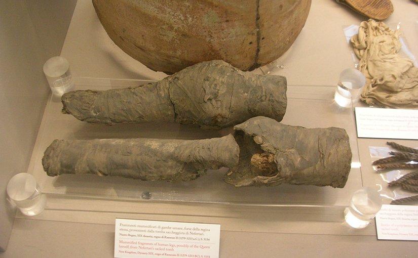 Mysterious mummified knees belonged to Queen Nefertari: researchers say