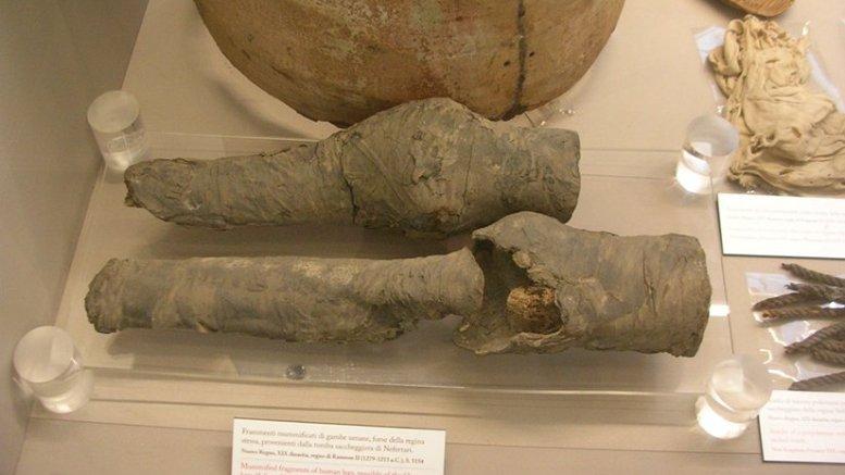 Nefertari's knees. Photo courtesy Joann Fletcher.