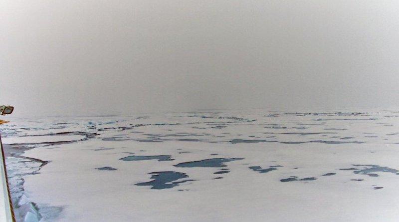 Melt ponds cover vast areas in the Arctic. Credit Heidi Louise Sørensen/SDU