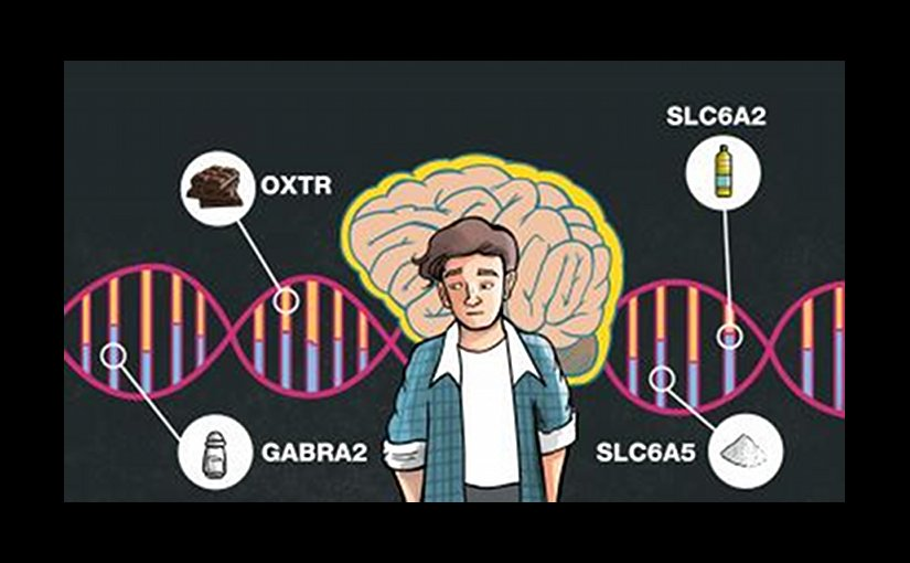 Researchers found that variations in certain genes play a significant role in a person's food choices and dietary habits. For example, higher chocolate intake and a larger waist size was associated with certain forms of the oxytocin receptor gene, and an obesity-associated gene played a role in vegetable and fiber intake. Other genes were involved in salt and fat intake. Credit By Adriano Kitani