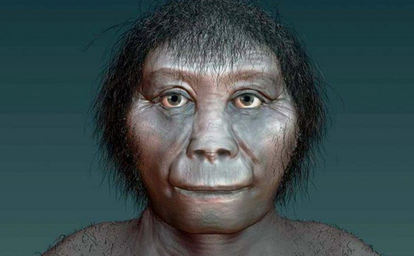 This is an artists impression of Homo floresiensis. Credit Katrina Kenny, SA Museum