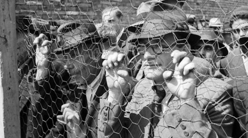 Jews being rounded up in Belgrade in 1941. Photo: German National Archives.