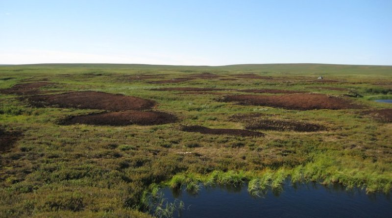 "Bare peat surfaces in the discontinuous permafrost zone of the sub-Arctic East European tundra. New research explores the source of unexpectedly high nitrous oxide emissions from such bare peat soils in Arctic tundra."" Photo credit: University of Eastern Finland Biogeochemistry Research Group"