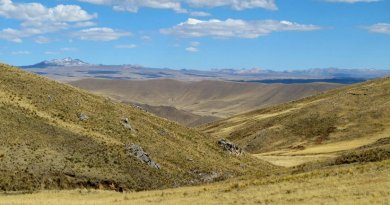 Intrepid hunter-gatherer families permanently occupied high-elevation environments of the Andes Mountains at least 7,000 years ago, according to new research led by University of Wyoming scientists. Credit Lauren A. Hayes