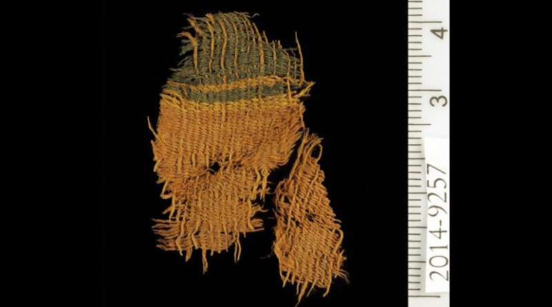 This is a dyed textile at Timna. Credit Clara Amit, courtesy of the Israeli Antiquities Authority.