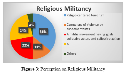 Figure 3: Perception on Religious Militancy