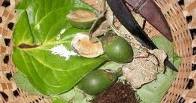 Sri Lanka bans Tobacco, Areca nut based products