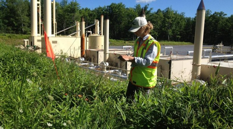 Lead researcher Kathryn Barlow, a doctoral student in ecology, conducts a plant survey on the edge of a Marcellus shale natural gas well pad. Credit Mortensen Lab, Penn State