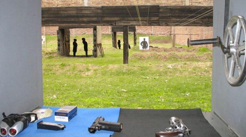 gun control handgun pistol