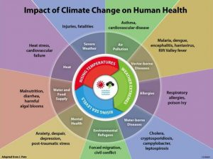 The impacts of climate change on human health. Source: US National Oceanic and Atmospheric Admistration. June 2015.